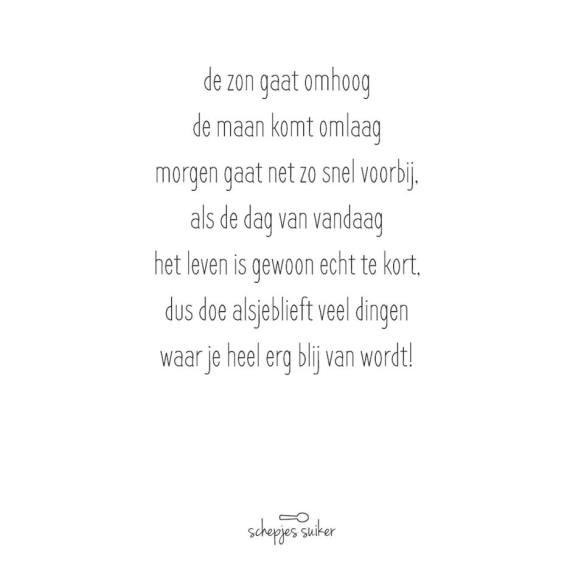 wordpress15-07
